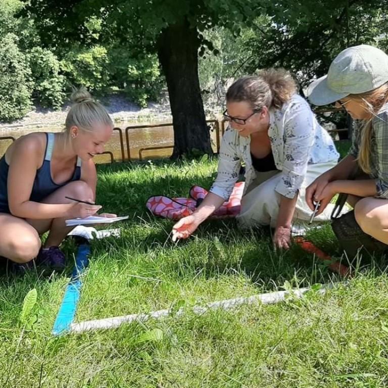 Fieldwork in Tartu 2020