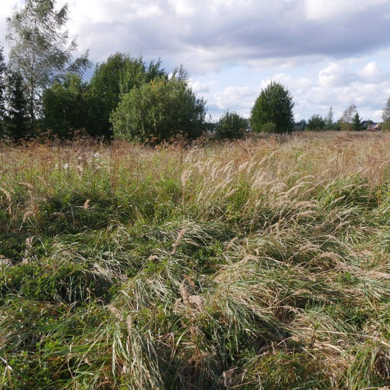 Conservation of natural biodiversity in agricultural land 2